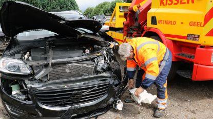 Wagen met vervalste nummerplaat crasht op E313, inzittenden vluchten weg