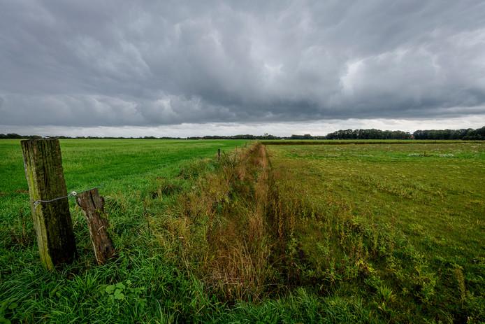 Ewald Huzink heeft conflict met gemeente en provincie over illegaal afgraven oude esgrond. Gaat om een stuk land achter het CSI-terrein.