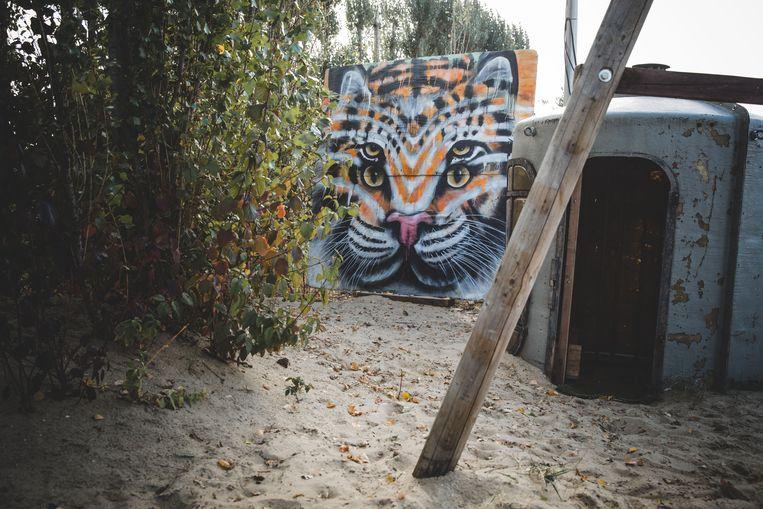 Een kat en een tijger in één op DOK