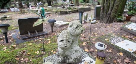 Is Prinsenbeek nu verlost van stank van dode dieren? 'De lust om te eten vergaat je direct'