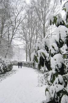 Winter op komst: dit weekend kans op 5 centimeter sneeuw in Twente