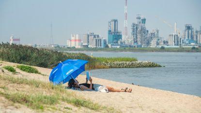 Zomers weekend: kwik klimt vandaag tot 24 graden, ook morgen opnieuw zonnig