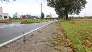 Nog meer files verwacht op drukke Assesteenweg (N285): twee weken beurtelings verkeer in Wambeek