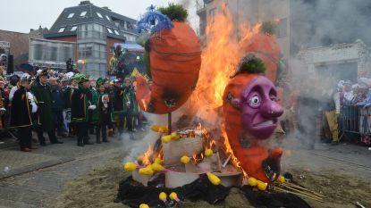 Wortelverbranding afsluiter van mooi carnaval