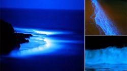 Oogverblindend mooi: Californische kust kleurt felblauw en dit is waarom