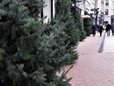 Straatbeeld: Net voor de komst van de Sint hangt de kerstverlichting weer