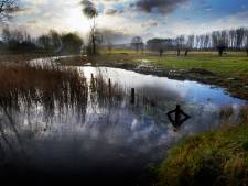 Meierijstad investeert in natuurgebieden