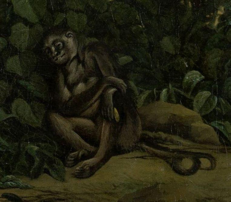 Een detail uit het schilderij Gezicht op Olinda (1662), in het bezit van het Rijksmuseum Beeld null