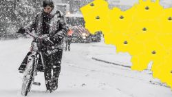 Tot 10 centimeter sneeuw: KMI kondigt 'code geel' af, ontdek hier hoeveel er bij jouw voorspeld is