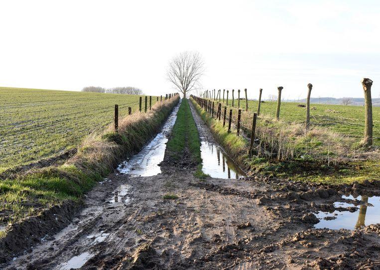 De landbouwraad sprak zich positief uit over de ruilverkaveling