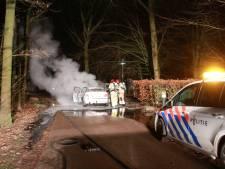 Brand verwoest auto op Center Parcs Eemhof: geen gewonden