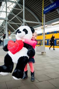 Wie gaf Esmee (3) op het station een grote knuffelpanda?