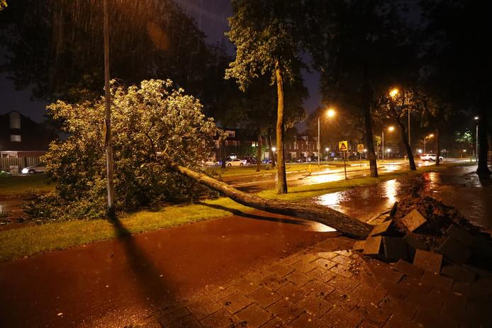 Bomen over de weg op de Kasteellaan in Eindhoven