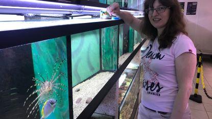 """""""Zeg niet zomaar 'viswinkel' tegen aquariumspeciaalzaak"""""""