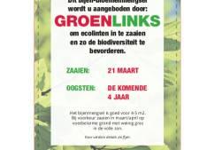GroenLinks zet bloemetjes buiten in binnenstad Steenwijk